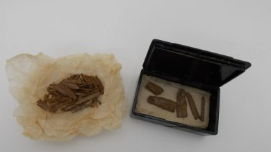 How an ancient Egyptian artefact was discovered in Aberdeen - and what it is?