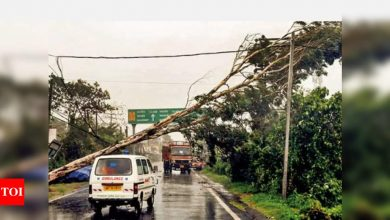 2 of 15 most-destructive 2020 climate disasters impacted India, says report | India News - Times of India