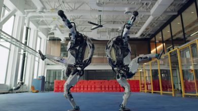 America is falling in 'Love' with these funky dancing robots