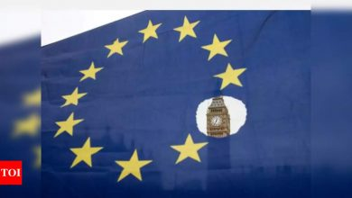 Britain and the EU: Timeline of a troubled marriage - Times of India