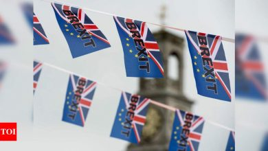 Deadline comes knocking: Is there hope left for Brexit deal? - Times of India
