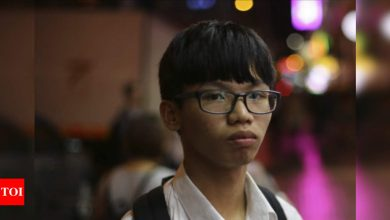 Hong Kong teen found guilty in China flag insult case - Times of India