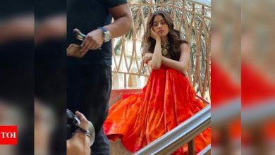 Janhvi Kapoor shares a picture of her 2020 mood; take a look! - Times of India
