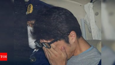 Japan's 'Twitter killer' drops death sentence appeal - Times of India