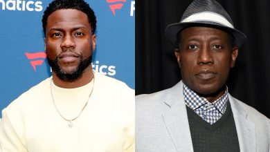 Kevin Hart and Wesley Snipes to play brothers in new Netflix miniseries