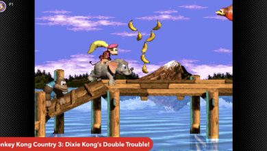 Nintendo completes Donkey Kong Country trilogy on Switch Online service
