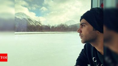 Rajkummar Rao's Christmas wish pic will surely give you major travel goals - Times of India