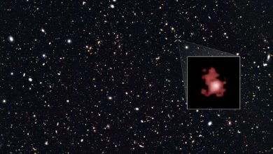 Researchers measure and confirm the distance to oldest, farthest galaxy GN-z11 in the universe