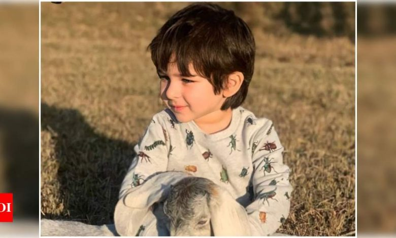 THIS UNSEEN picture of Taimur Ali Khan is too adorable for words! - Times of India