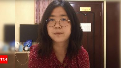 Who is Zhang Zhan, the Chinese journalist jailed for Covid reporting? - Times of India