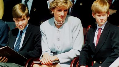 Prince William and Prince Harry will be at odds over Diana photo, expert claims