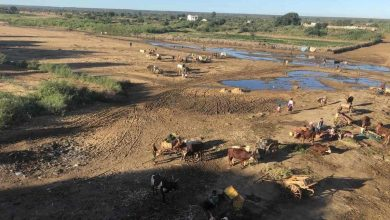 UN seeks $76 mn in emergency aid for Madagascar, hit by 'worst drought in a decade'