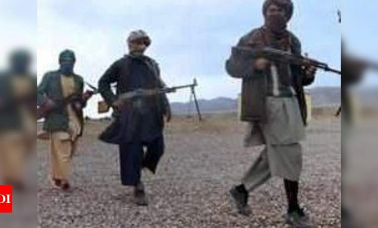 Afghanistan Army kills 8 Taliban terrorists in Takhar province - Times of India