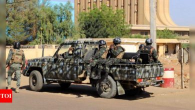 Attacks on 2 villages in Niger kill at least 100 people - Times of India