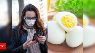 Bird flu scare: Is it safe to consume eggs and chicken? Here's what you should know - Times of India