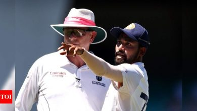 Brown dog, go home: Indians racially abused at SCG again | Cricket News - Times of India