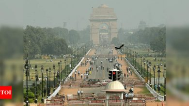 Central Vista: Shapoorji Pallonji emerges as lowest bidder for Rajpath redevelopment | India News - Times of India