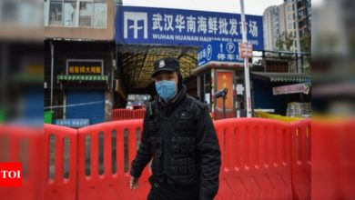 China says WHO experts to visit Wuhan in virus origins probe - Times of India