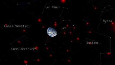 Citizen scientists help create most complete 3D map of brown dwarfs in Milky Way