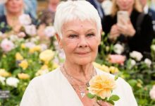 Dame Judi Dench confesses she loathes being called 'national treasure'