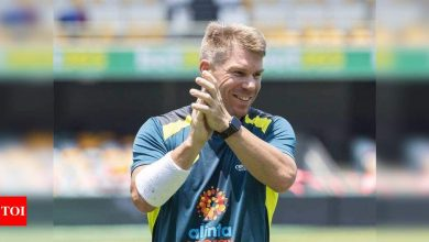 David Warner:  India vs Australia: Fielding will determine whether I play the Sydney Test, says David Warner | Cricket News - Times of India