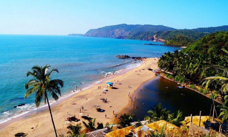 Delicious local drinks from Goa you must not miss  | The Times of India