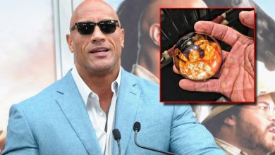 Dwayne Johnson On Sudden Demise Of Father: Never Had A Chance To Say Goodbye