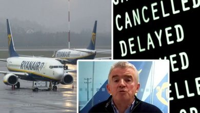Flights: Ryanair boss warns covid test rules will see flights 'cancelled' & UK 'cut off'