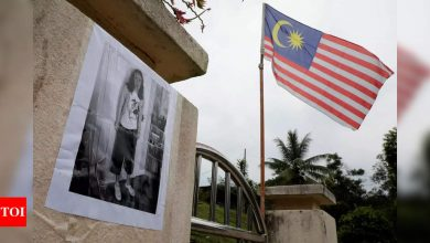 French-Irish teen's Malaysia death ruled 'misadventure' - Times of India