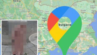 Google Maps Street View: 'Granny' wielding 'murder' weapon in photo leaves users 'scared'