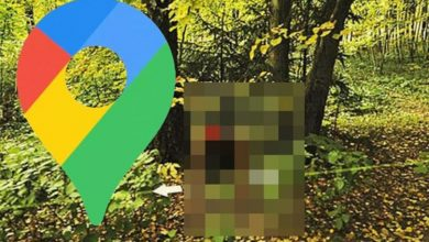 Google Maps Street View: Man wearing sinister mask spotted hiding in very creepy photo