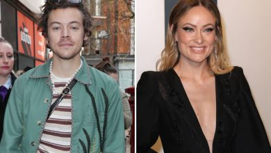 Olivia Wilde Trolled For Romancing Harry Styles