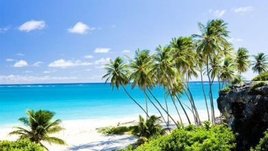 Holiday woe as Barbados could be axed from travel corridor list - where can you travel?