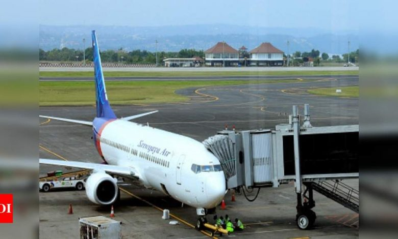 Indonesia's Sriwijaya flew old planes and neglected routes to become No 3 carrier - Times of India