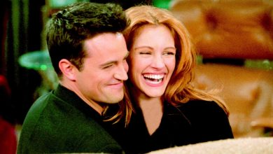 """Julia Roberts only appeared on 'Friends' because Matthew Perry wrote a """"paper on quantum physics"""" for her"""