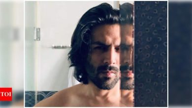 Kartik Aaryan's breathtaking mirror selfie will have you crushing hard over time - Times of India