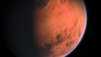 Mars wobbles as it spins, the exact cause may take years of high quality data to uncover
