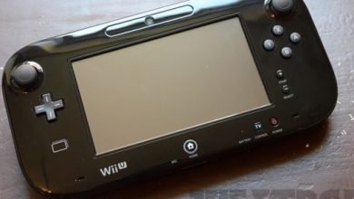 Netflix on the Wii U and 3DS will shut down on June 30th