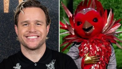 Olly Murs speaks out on suggestions he is The Masked Singer's Robin as fans spot 'clue'