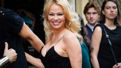 Pamela Anderson stole my man and split up our family, claims Dan Hayhurt's furious ex