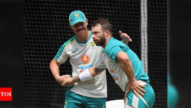 Players like Warner are hard to come by, says Wade | Cricket News - Times of India
