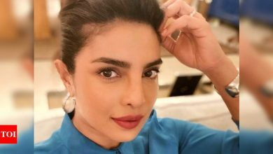 Priyanka Chopra Jonas says she is an 'updo expert' as she shares a gorgeous new selfie ahead of her virtual meeting - Times of India