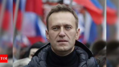 Russia detains Navalny allies after raids - Times of India
