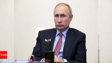 Russian President Vladimir Putin pays condolences over death of US talk show host Larry King - Times of India