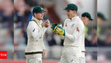 Smith 'feeds off' criticism warns Paine ahead of Gabba showdown   Cricket News - Times of India