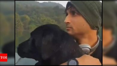 Sushant Singh Rajput's niece Mallika shares a delightful video of his furry friend Fudge - Times of India