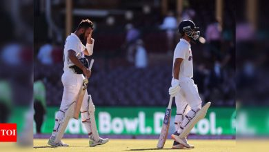 Sydney Test: Day 5 plan - Stay alive for a push in the final session | Cricket News - Times of India