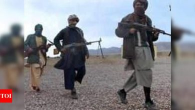 Taliban praise continued US troop withdrawal from Afghanistan - Times of India