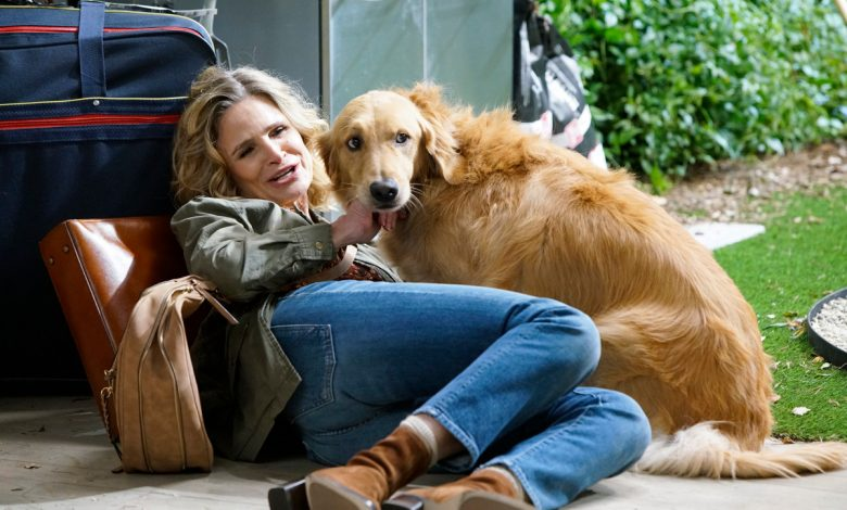The dog is the best part of Kyra Sedgwick's new show 'Call Your Mother'