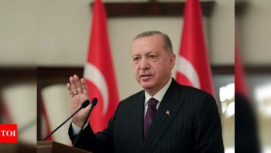 Turkey hits Twitter, Pinterest with advertising bans - Times of India
